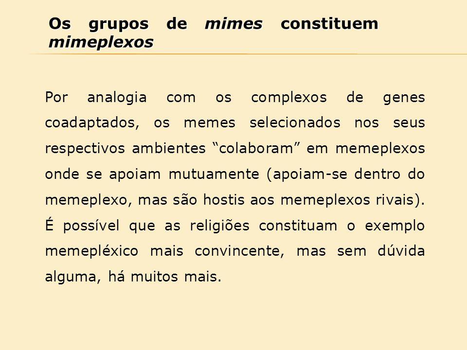 """Os grupos de mimes constituem mimeplexos Por analogia com os complexos de genes coadaptados, os memes selecionados nos seus respectivos ambientes """"col"""