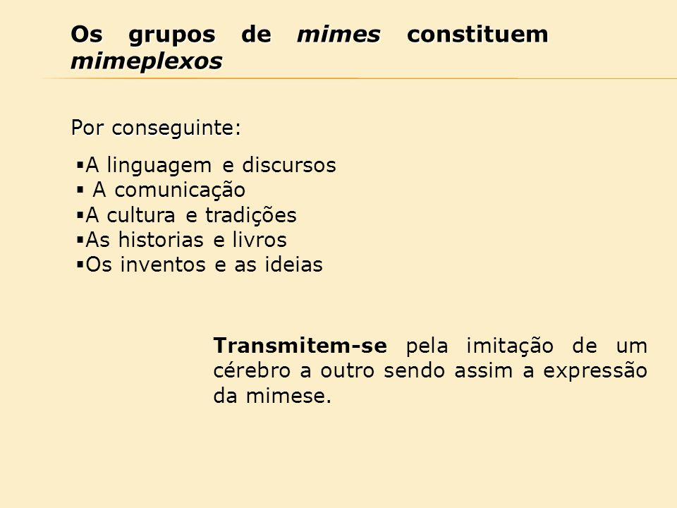 Os grupos de mimes constituem mimeplexos Por conseguinte:  A linguagem e discursos  A comunicação  A cultura e tradições  As historias e livros 
