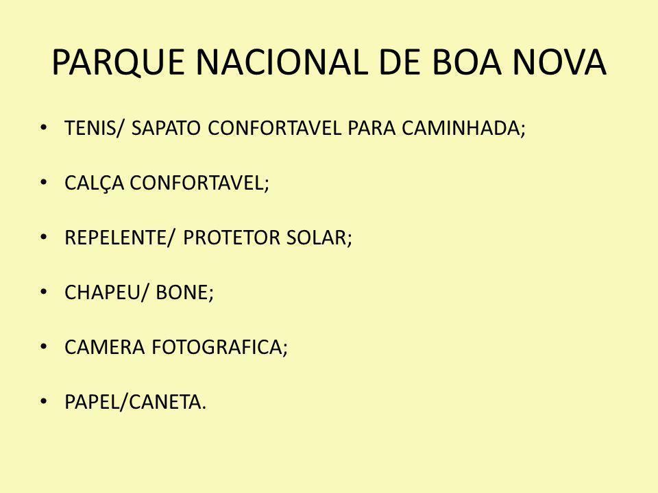 PARQUE NACIONAL DE BOA NOVA TENIS/ SAPATO CONFORTAVEL PARA CAMINHADA; CALÇA CONFORTAVEL; REPELENTE/ PROTETOR SOLAR; CHAPEU/ BONE; CAMERA FOTOGRAFICA;