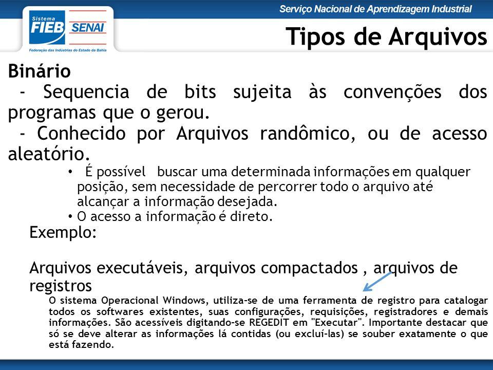 Tipos de Arquivos Binário - Sequencia de bits sujeita às convenções dos programas que o gerou.
