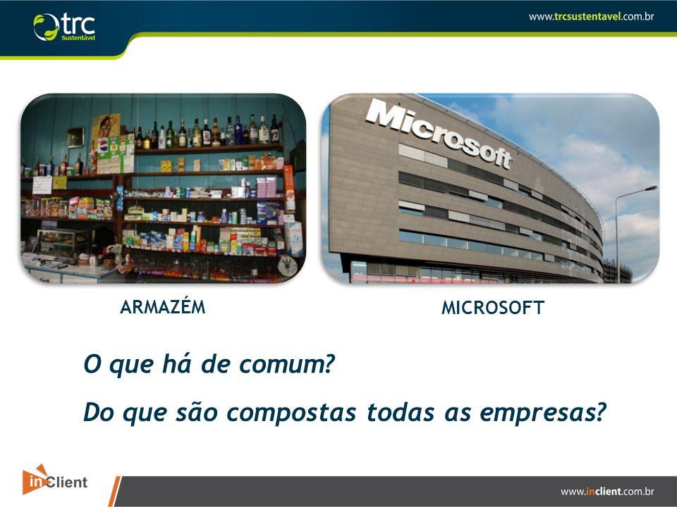 ARMAZÉM MICROSOFT O que há de comum? Do que são compostas todas as empresas?