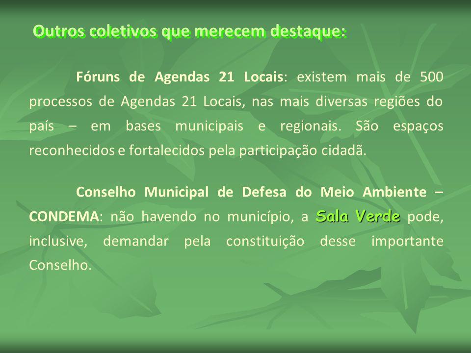 Outros coletivos que merecem destaque: Fóruns de Agendas 21 Locais: existem mais de 500 processos de Agendas 21 Locais, nas mais diversas regiões do país – em bases municipais e regionais.