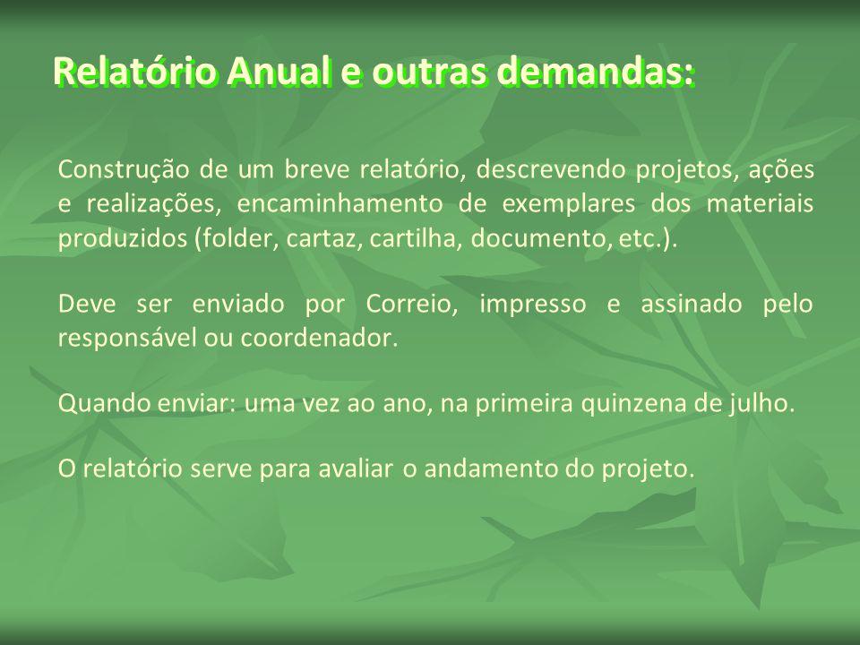 Relatório Anual e outras demandas: Construção de um breve relatório, descrevendo projetos, ações e realizações, encaminhamento de exemplares dos materiais produzidos (folder, cartaz, cartilha, documento, etc.).
