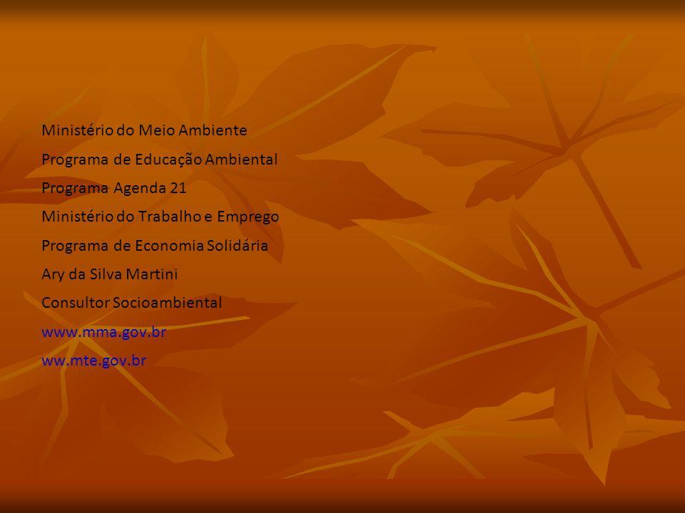 Ministério do Meio Ambiente Programa de Educação Ambiental Programa Agenda 21 Ministério do Trabalho e Emprego Programa de Economia Solidária Ary da Silva Martini Consultor Socioambiental www.mma.gov.br ww.mte.gov.br
