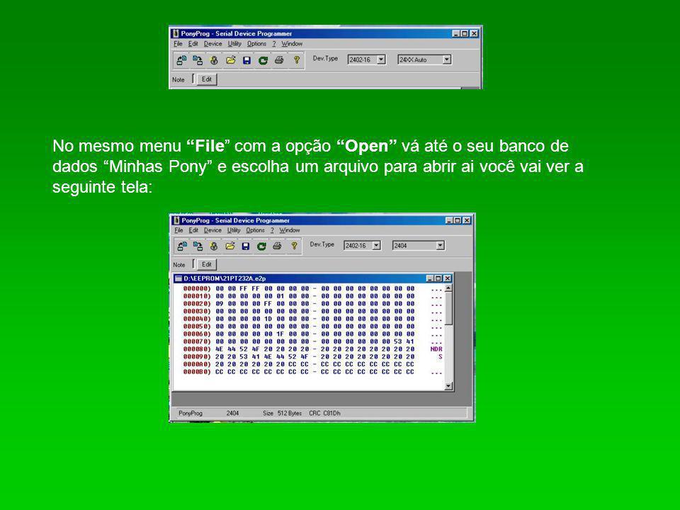 """No mesmo menu """"File"""" com a opção """"Open"""" vá até o seu banco de dados """"Minhas Pony"""" e escolha um arquivo para abrir ai você vai ver a seguinte tela:"""