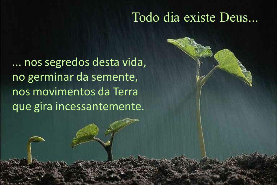 ... nos segredos desta vida, no germinar da semente, nos movimentos da Terra que gira incessantemente.