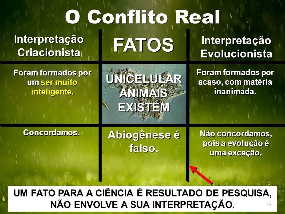 O Conflito Real Interpretação Criacionista Interpretação Evolucionista FATOS Foram formados por um ser muito inteligente. Foram formados por acaso, co
