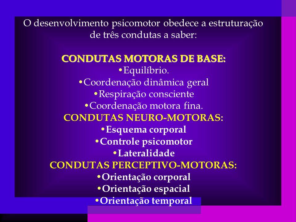 O desenvolvimento psicomotor obedece a estruturação de três condutas a saber: CONDUTAS MOTORAS DE BASE: Equilíbrio.