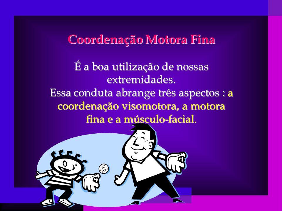 Coordenação Motora Fina É a boa utilização de nossas extremidades.