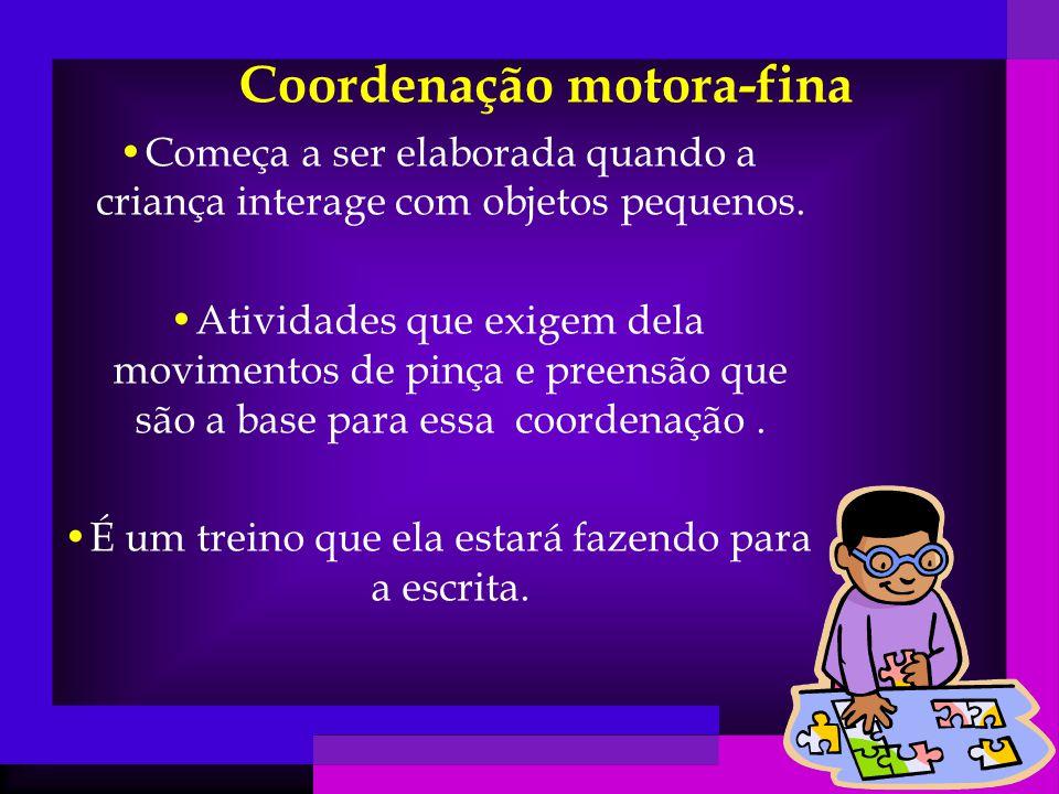 Coordenação motora-fina Começa a ser elaborada quando a criança interage com objetos pequenos.