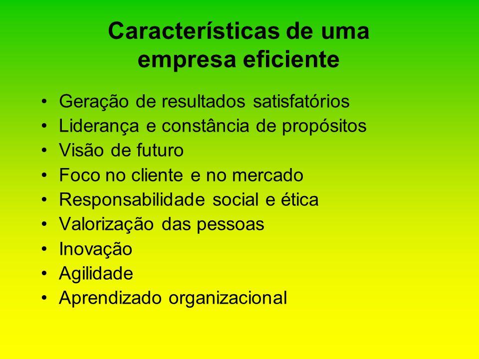 Características de uma empresa eficiente Geração de resultados satisfatórios Liderança e constância de propósitos Visão de futuro Foco no cliente e no