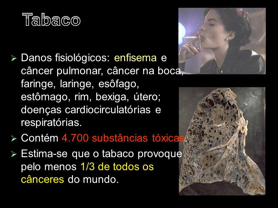  Danos fisiológicos: enfisema e câncer pulmonar, câncer na boca, faringe, laringe, esôfago, estômago, rim, bexiga, útero; doenças cardiocirculatórias