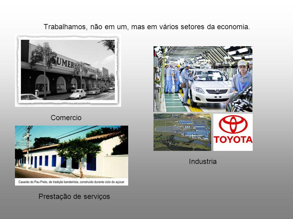 Trabalhamos, não em um, mas em vários setores da economia. Comercio Industria Prestação de serviços
