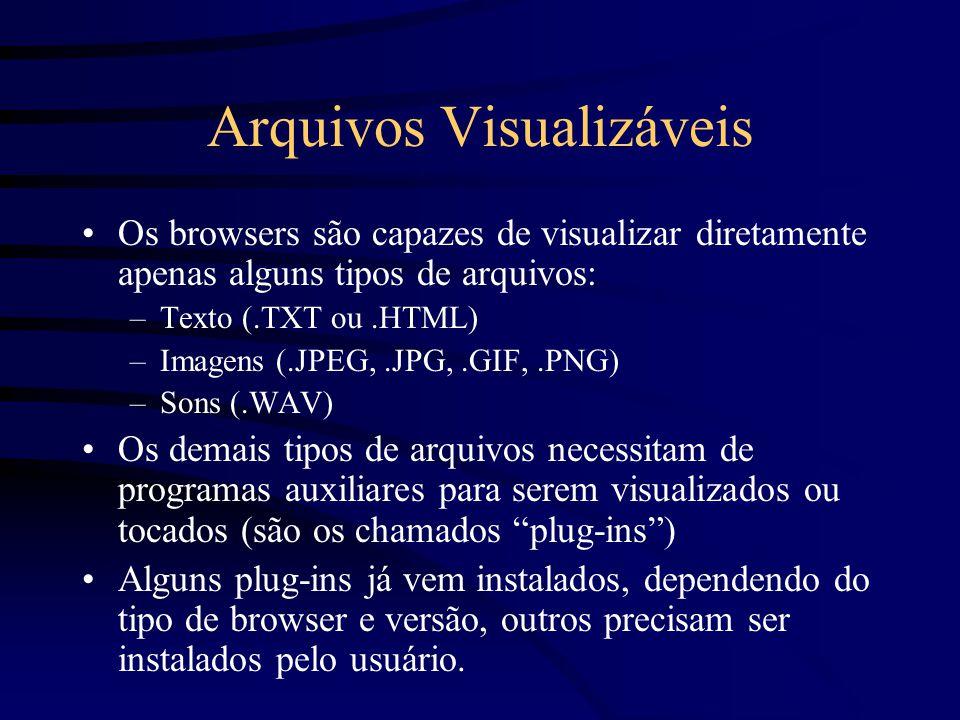 Arquivos Visualizáveis Os browsers são capazes de visualizar diretamente apenas alguns tipos de arquivos: –Texto (.TXT ou.HTML) –Imagens (.JPEG,.JPG,.GIF,.PNG) –Sons (.WAV) Os demais tipos de arquivos necessitam de programas auxiliares para serem visualizados ou tocados (são os chamados plug-ins ) Alguns plug-ins já vem instalados, dependendo do tipo de browser e versão, outros precisam ser instalados pelo usuário.