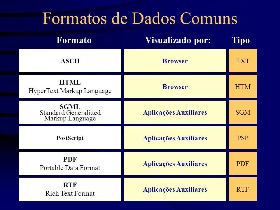 Formatos de Dados Comuns HTML HyperText Markup Language Browser SGML Standard Generalized Markup Language Aplicações Auxiliares PDF Portable Data Format Aplicações Auxiliares FormatoVisualizado por: ASCIIBrowser PostScript Aplicações Auxiliares RTF Rich Text Format Aplicações Auxiliares TXT HTM SGM PSP PDF RTF Tipo