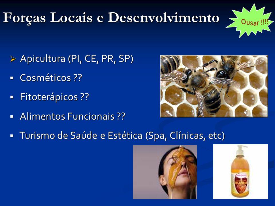Forças Locais e Desenvolvimento  Apicultura (PI, CE, PR, SP)  Cosméticos .