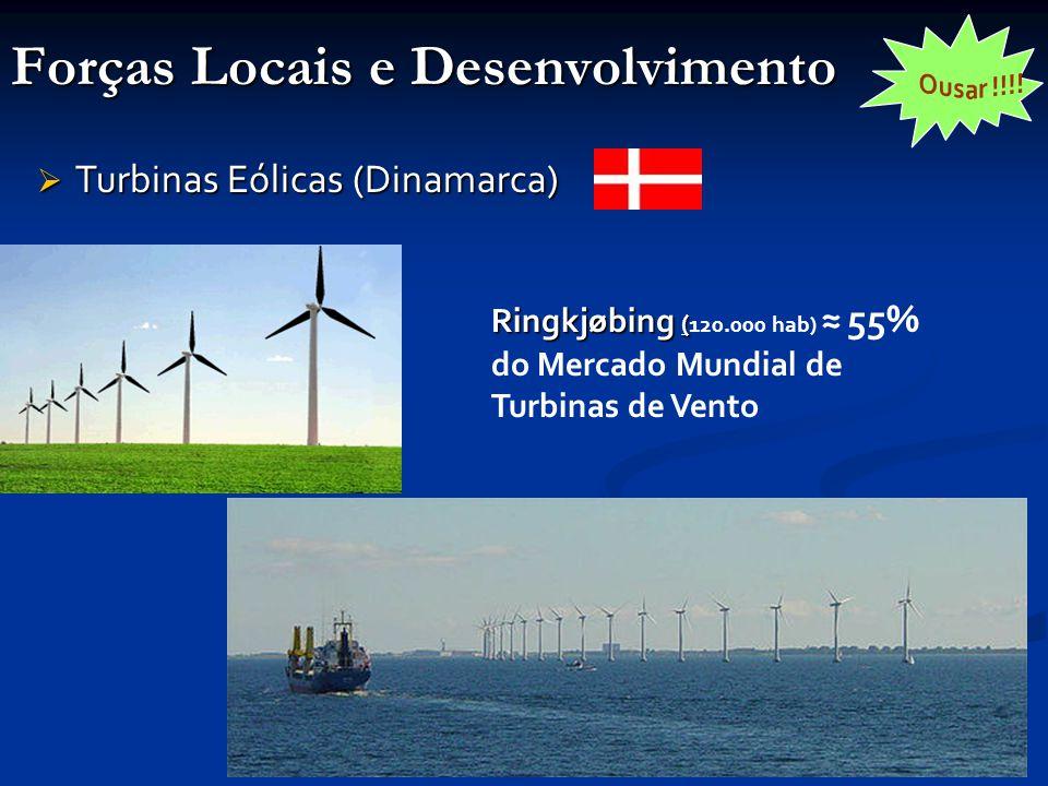 Forças Locais e Desenvolvimento  Turbinas Eólicas (Dinamarca) Ringkjøbing ( Ringkjøbing ( 120.000 hab) ≈ 55% do Mercado Mundial de Turbinas de Vento