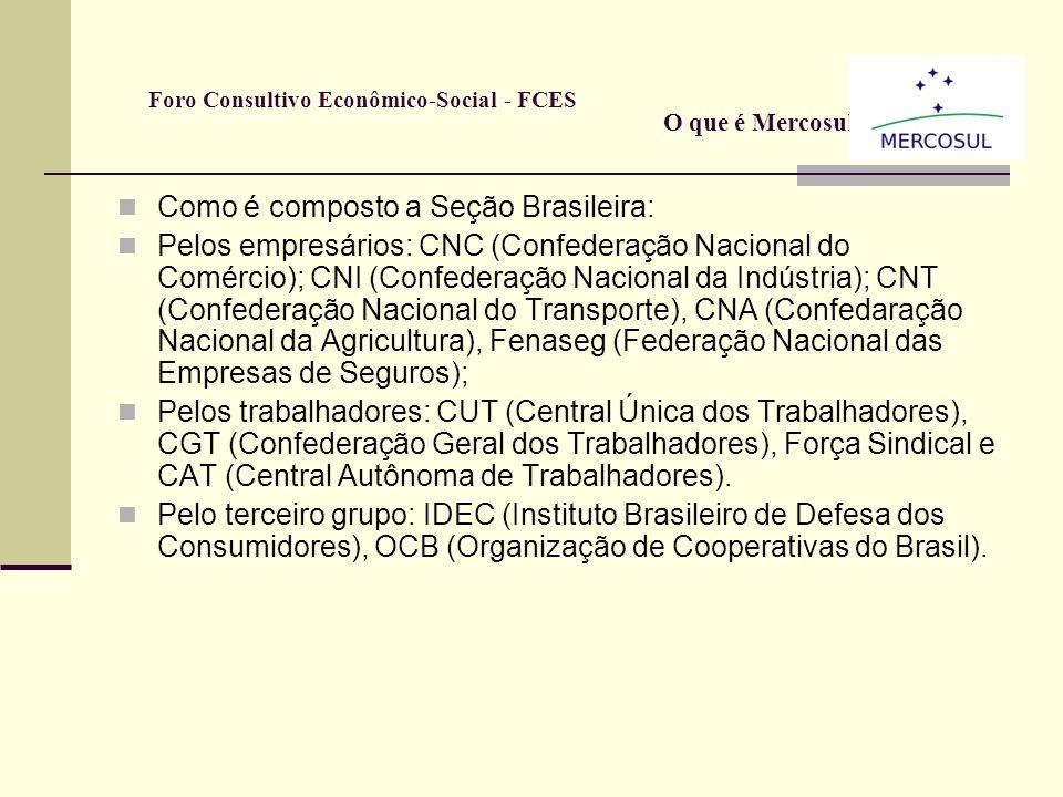 Como é composto: Por representantes dos trabalhadores, dos empresários e 3º Setor dos quatro países (Brasil, Argentina, Uruguai e Paraguai); Artigo 28