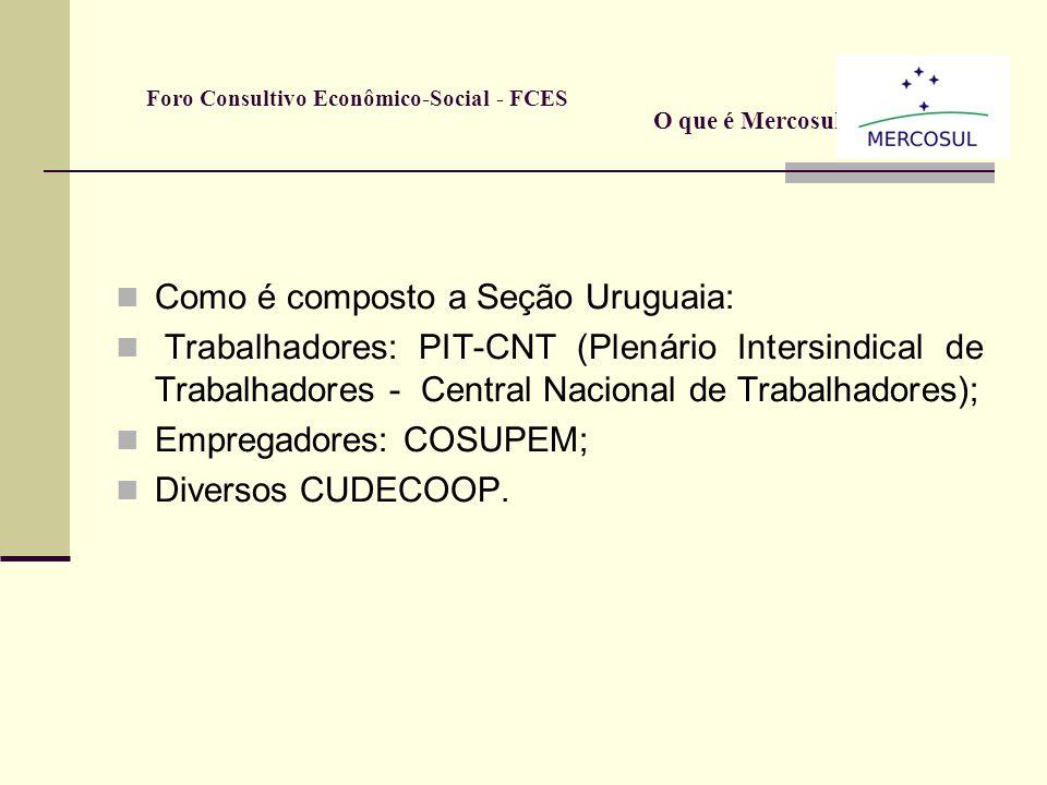 Como é composto a Seção Paraguaia: Trabalhadores: CNT (Central Nacional de Trabalhadores), CUT (Central Única de Trabalhadores), CPT (Confederação Par