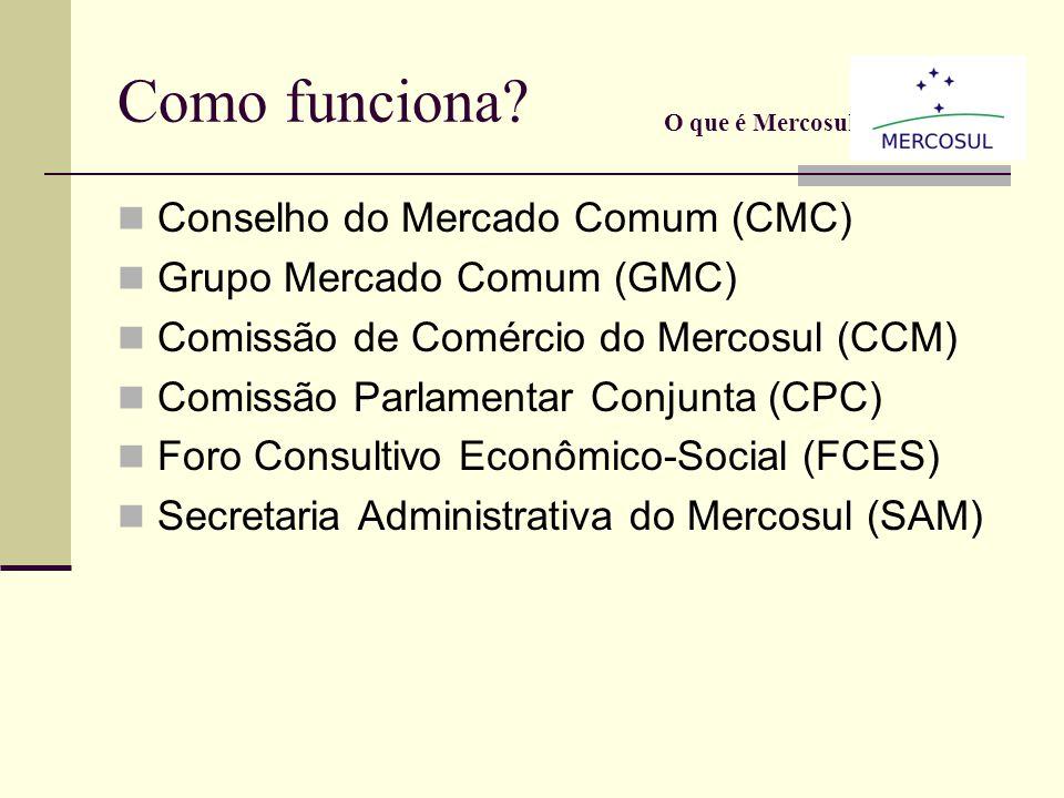 O que é o Mercosul? Definido no artigo 1º do Tratado de Assunção, constitui-se em Mercado Comum estabelecido entre os quatro países do Cone Sul, desti