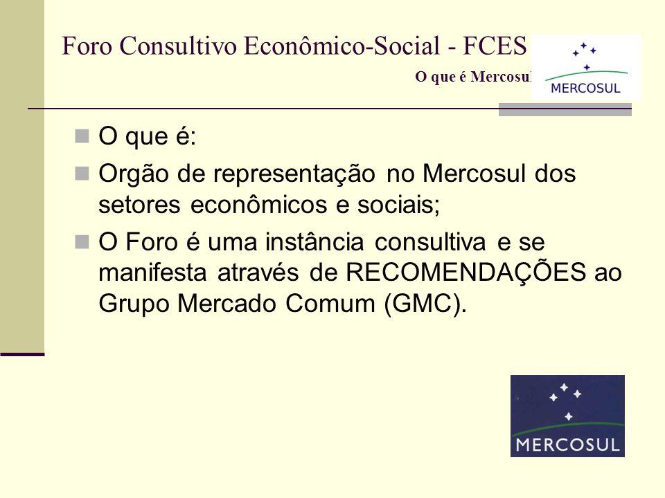 Foro Consultivo Econômico-Social - FCES O que é: Orgão de representação no Mercosul dos setores econômicos e sociais; O Foro é uma instância consultiva e se manifesta através de RECOMENDAÇÕES ao Grupo Mercado Comum (GMC).