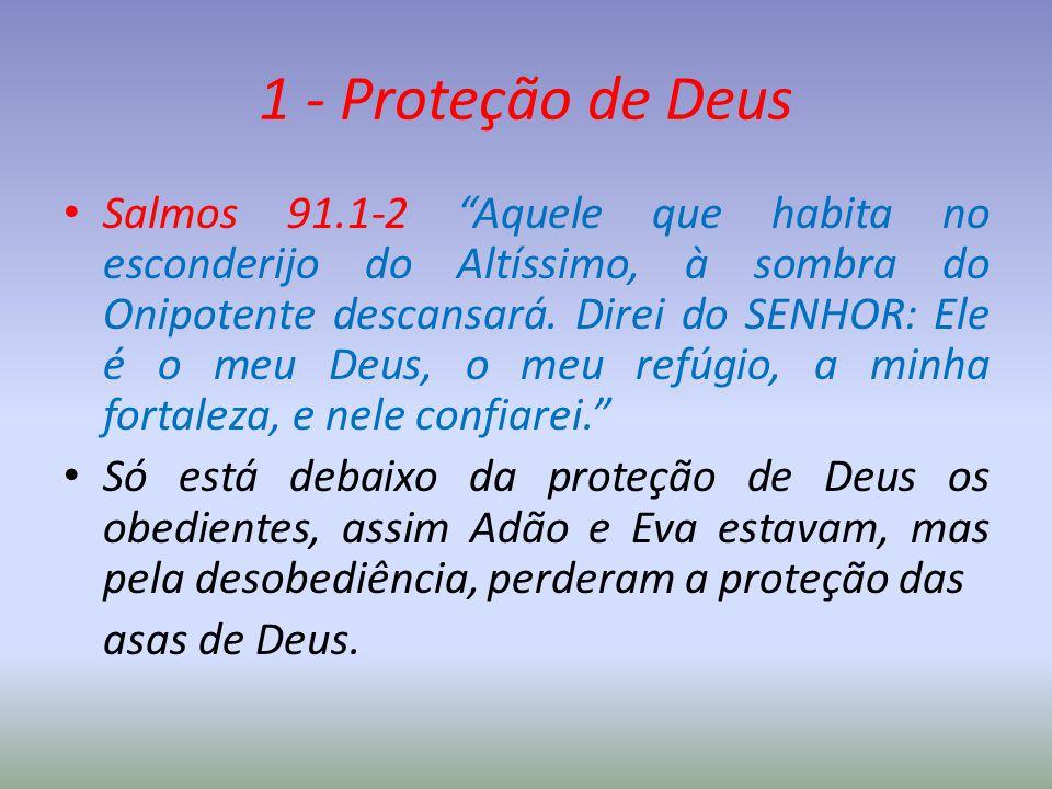 """1 - Proteção de Deus Salmos 91.1-2 """"Aquele que habita no esconderijo do Altíssimo, à sombra do Onipotente descansará. Direi do SENHOR: Ele é o meu Deu"""