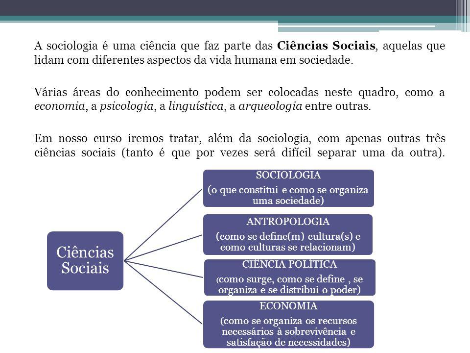 Teremos 4 módulos ao longo do ano, cada um sobre um tema sociológico específico.