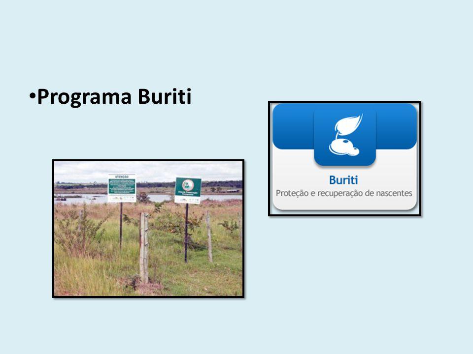 Programa Buriti