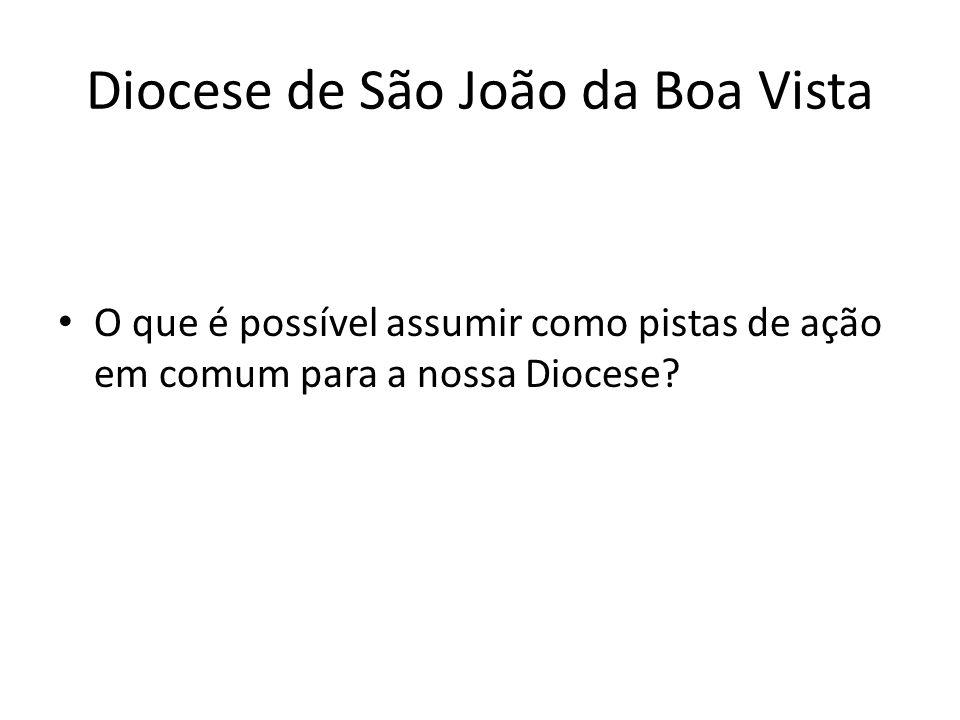 Diocese de São João da Boa Vista O que é possível assumir como pistas de ação em comum para a nossa Diocese?
