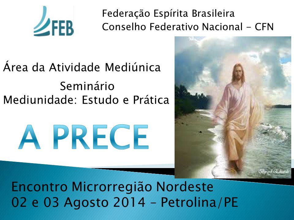 Federação Espírita Brasileira Conselho Federativo Nacional - CFN Área da Atividade Mediúnica Seminário Mediunidade: Estudo e Prática Encontro Microrre