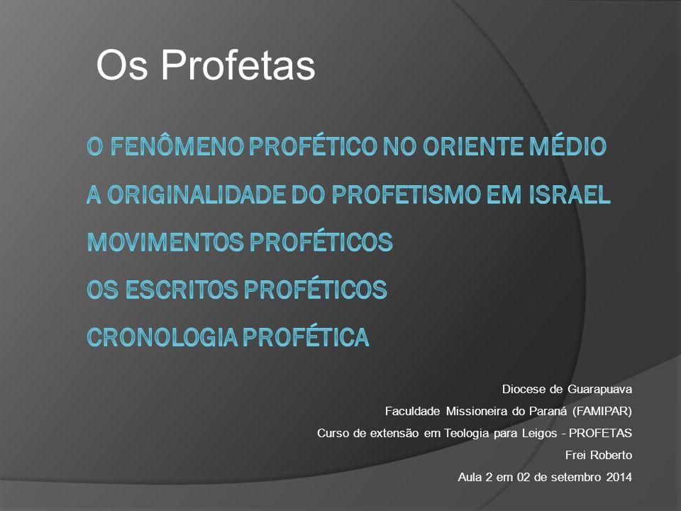 Diocese de Guarapuava Faculdade Missioneira do Paraná (FAMIPAR) Curso de extensão em Teologia para Leigos - PROFETAS Frei Roberto Aula 2 em 02 de setembro 2014 Os Profetas