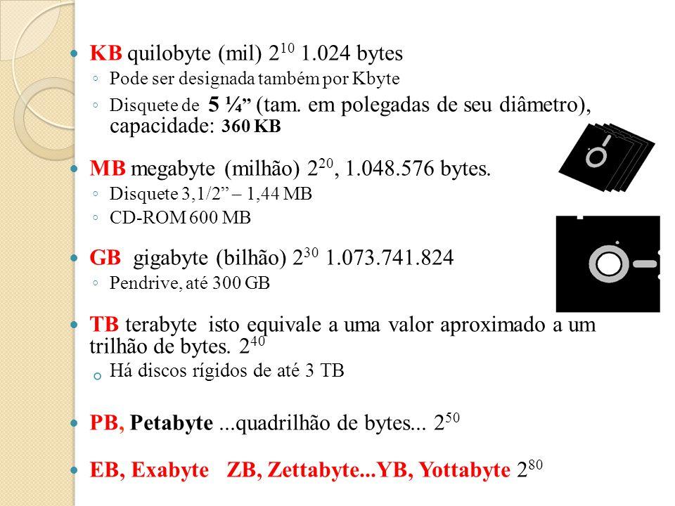 Bit – Binary Digit – menor unidade de informação que pode ser processada. Um bit pode assumir 2 valores: ◦ 0 ou 1 Byte - conjunto de 8 bits. Cada byte