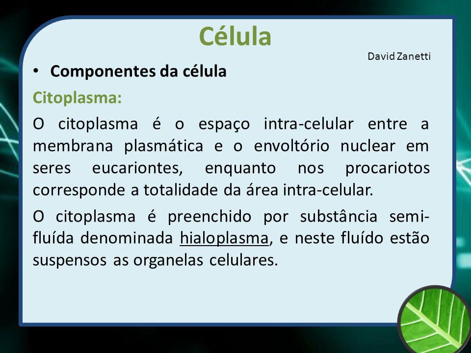 Célula Componentes da célula Citoplasma: O citoplasma é o espaço intra-celular entre a membrana plasmática e o envoltório nuclear em seres eucariontes