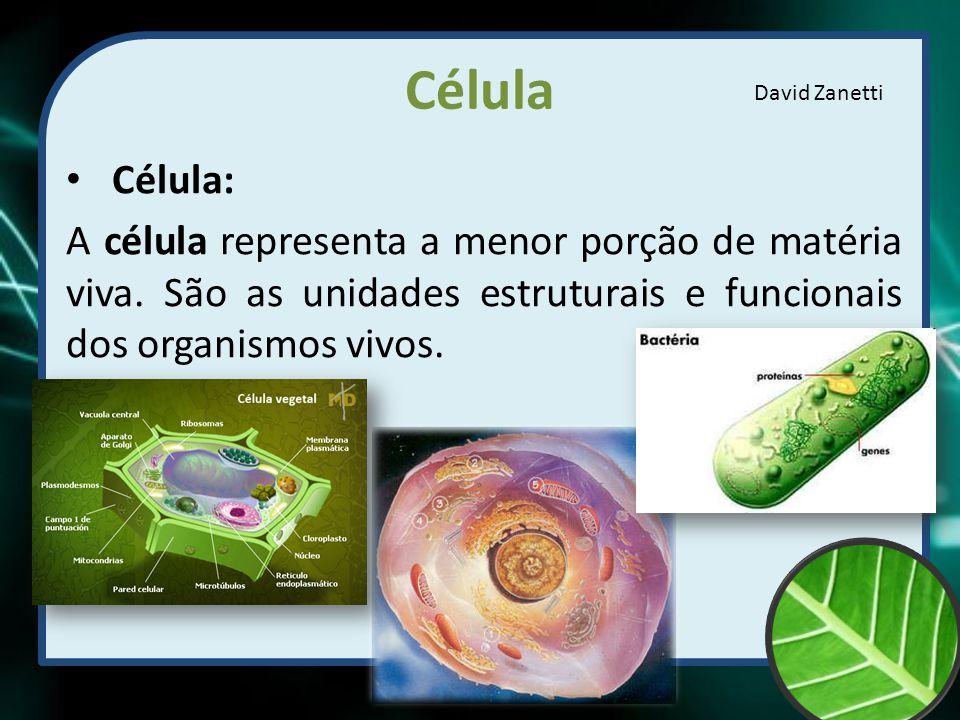 Célula Célula: A célula representa a menor porção de matéria viva. São as unidades estruturais e funcionais dos organismos vivos. David Zanetti