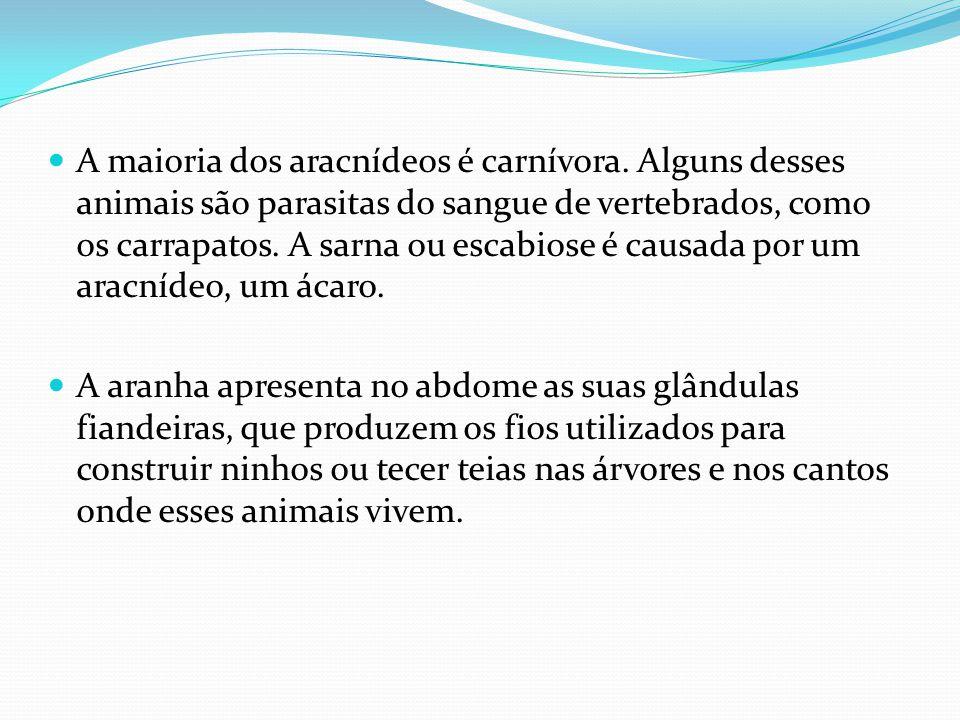 A maioria dos aracnídeos é carnívora. Alguns desses animais são parasitas do sangue de vertebrados, como os carrapatos. A sarna ou escabiose é causada