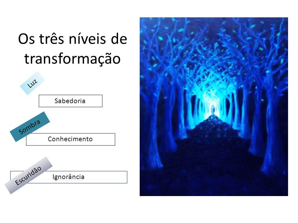 Os três níveis de transformação Ignorância Conhecimento Sabedoria Escuridão Sombra Luz