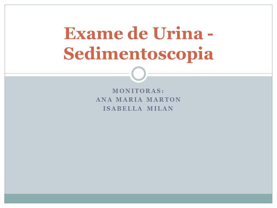 MONITORAS: ANA MARIA MARTON ISABELLA MILAN Exame de Urina - Sedimentoscopia