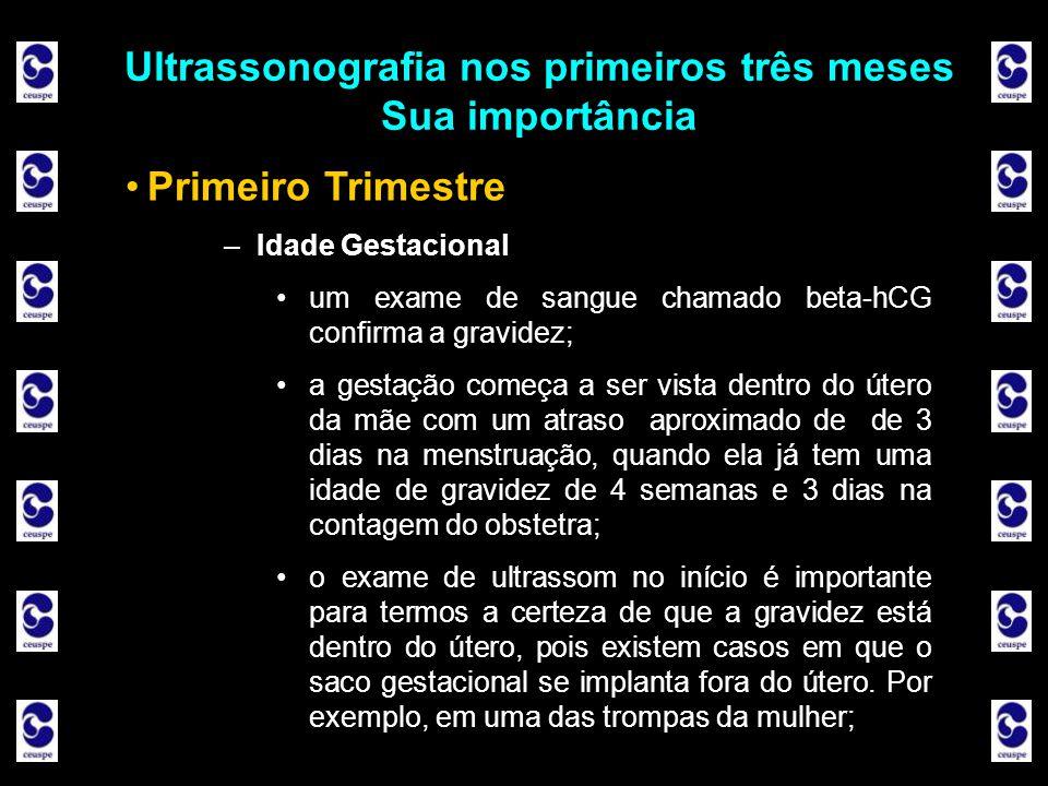 Ultrassonografia nos primeiros três meses Sua importância Ultrassonografia nos primeiros três meses Sua importância Primeiro Trimestre –Idade Gestacio