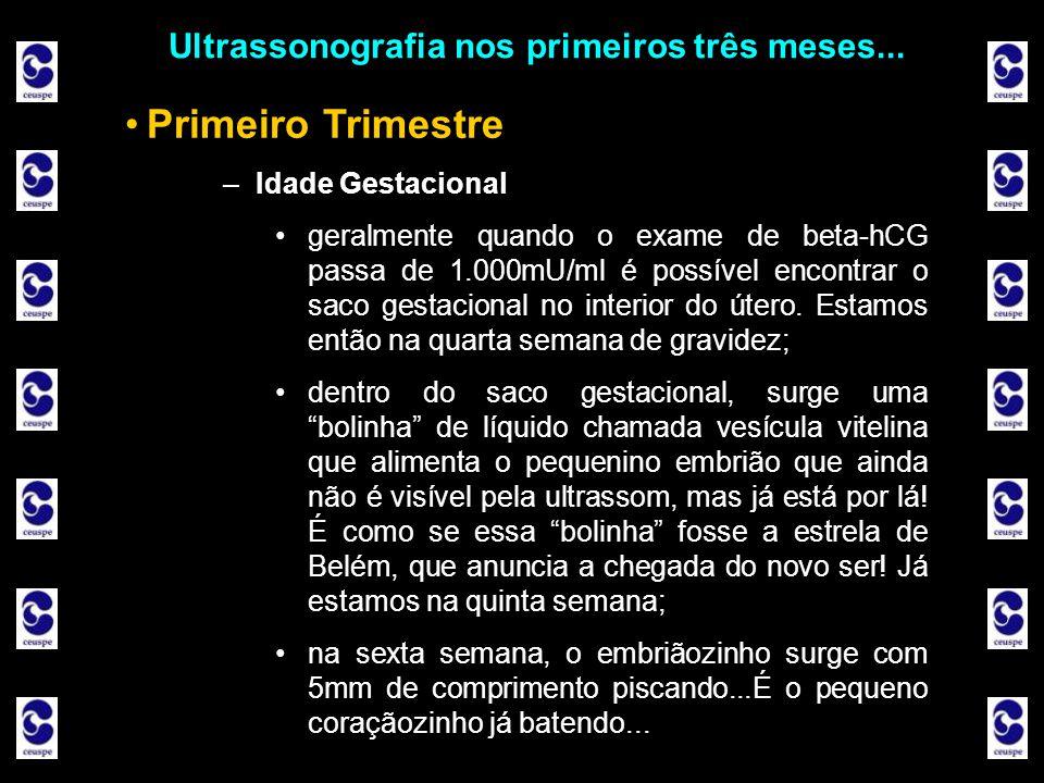 Ultrassonografia nos primeiros três meses... Primeiro Trimestre –Idade Gestacional geralmente quando o exame de beta-hCG passa de 1.000mU/ml é possíve