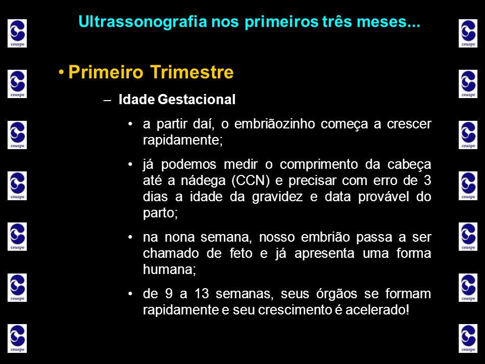 Ultrassonografia nos primeiros três meses... Primeiro Trimestre –Idade Gestacional a partir daí, o embriãozinho começa a crescer rapidamente; já podem