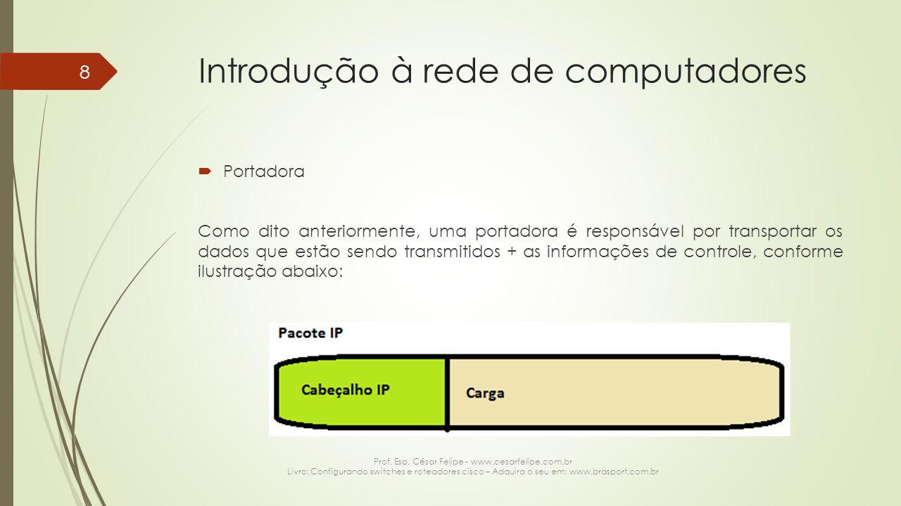 Introdução à rede de computadores  Portadora (continuação) Obviamente a ilustração anterior é mero desenho didático, na verdade, uma portadora tem a seguinte estrutura: Prof.