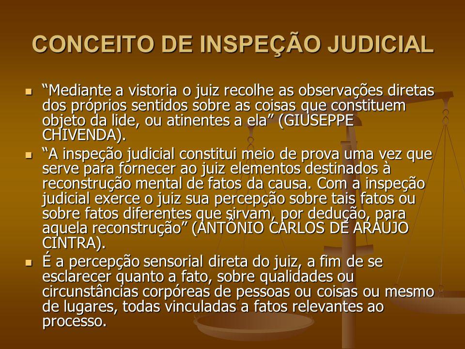 """CONCEITO DE INSPEÇÃO JUDICIAL """"Mediante a vistoria o juiz recolhe as observações diretas dos próprios sentidos sobre as coisas que constituem objeto d"""