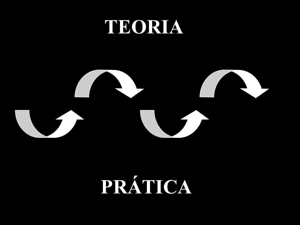 TEORIA PRÁTICA