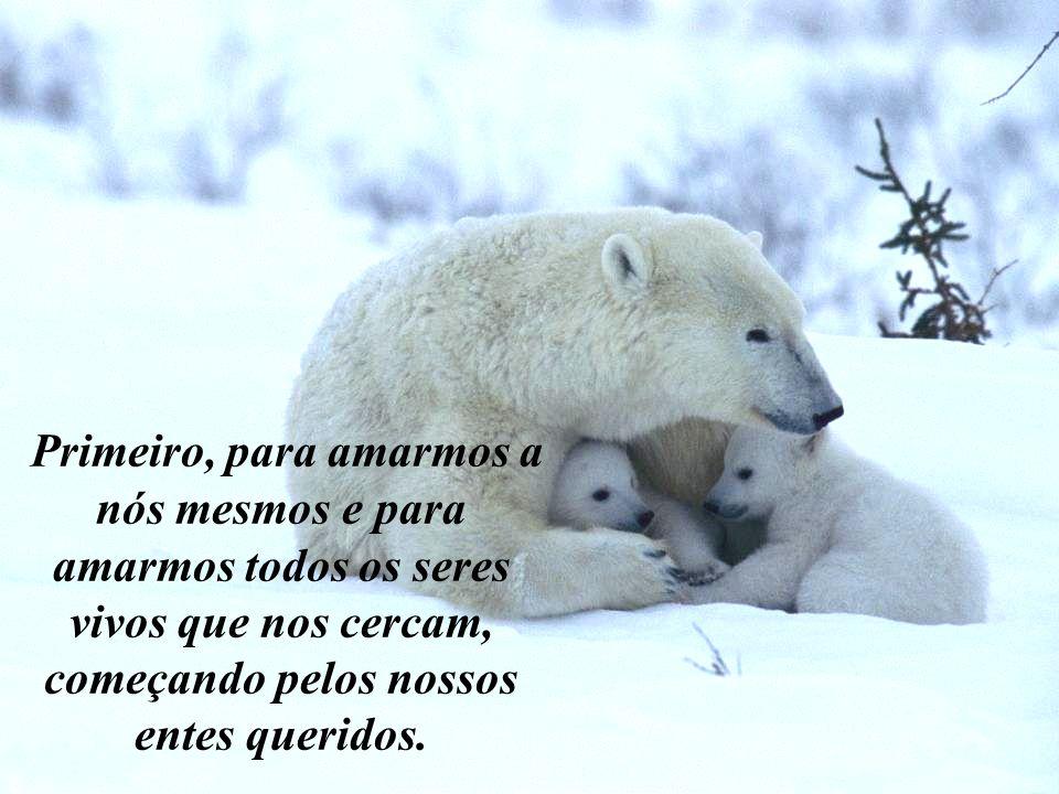 Primeiro, para amarmos a nós mesmos e para amarmos todos os seres vivos que nos cercam, começando pelos nossos entes queridos.