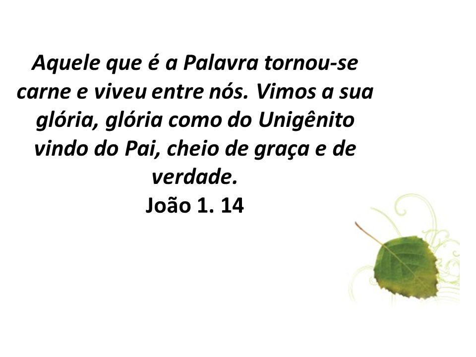 Aquele que é a Palavra tornou-se carne e viveu entre nós. Vimos a sua glória, glória como do Unigênito vindo do Pai, cheio de graça e de verdade. João