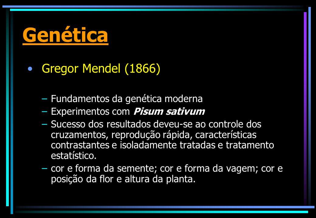 Genética Gregor Mendel (1866) –Fundamentos da genética moderna –Experimentos com Pisum sativum –Sucesso dos resultados deveu-se ao controle dos cruzamentos, reprodução rápida, características contrastantes e isoladamente tratadas e tratamento estatístico.