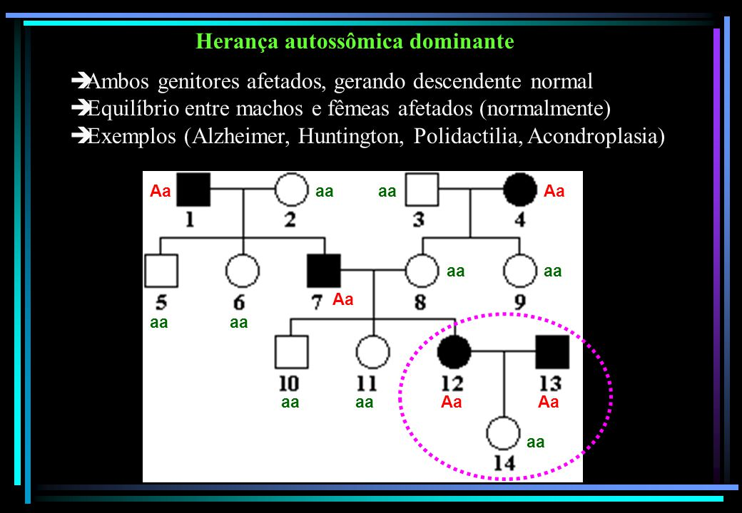 Herança autossômica dominante  Ambos genitores afetados, gerando descendente normal  Equilíbrio entre machos e fêmeas afetados (normalmente)  Exemp