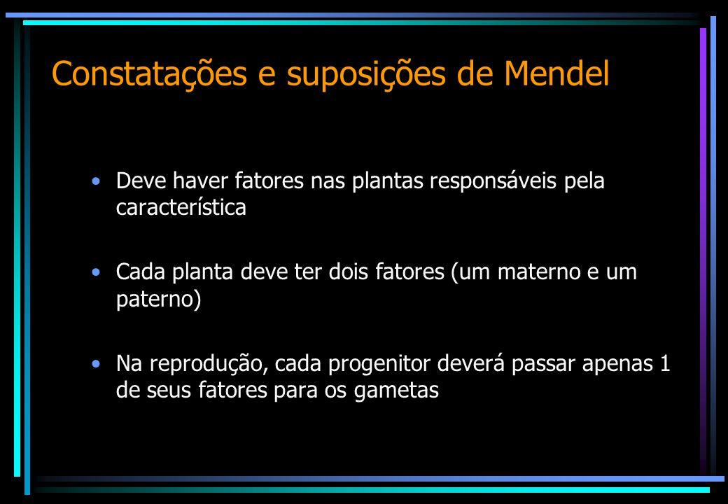 Constatações e suposições de Mendel Deve haver fatores nas plantas responsáveis pela característica Cada planta deve ter dois fatores (um materno e um paterno) Na reprodução, cada progenitor deverá passar apenas 1 de seus fatores para os gametas