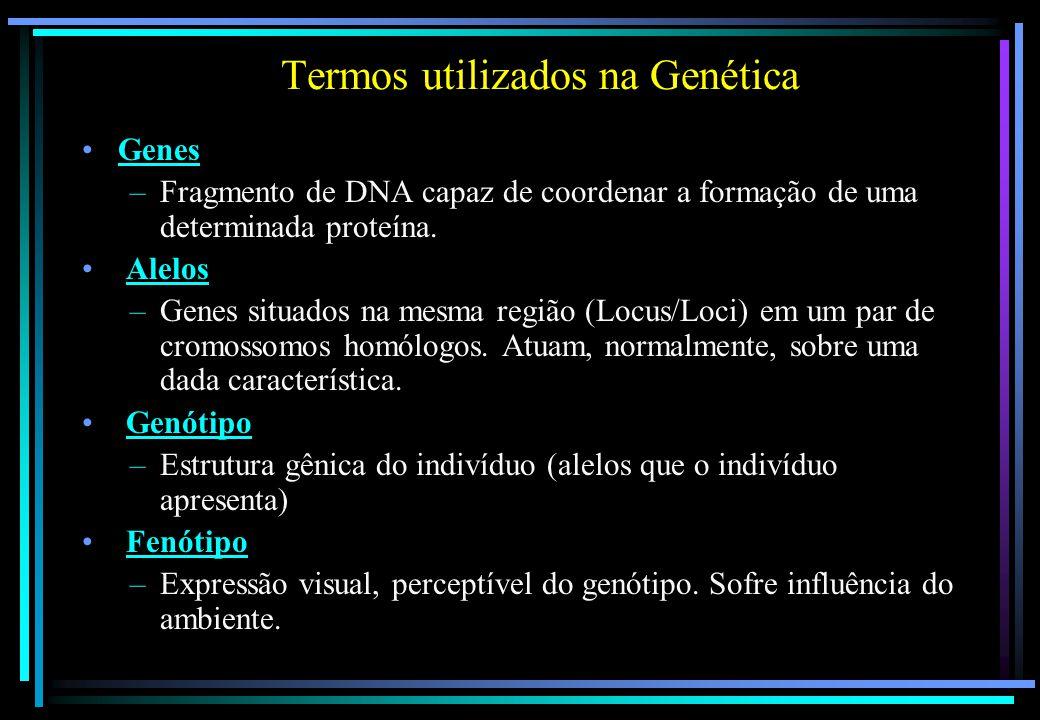 Termos utilizados na Genética Genes –Fragmento de DNA capaz de coordenar a formação de uma determinada proteína. Alelos –Genes situados na mesma regiã