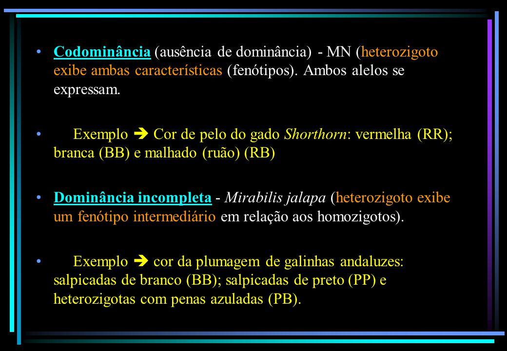 Codominância (ausência de dominância) - MN (heterozigoto exibe ambas características (fenótipos). Ambos alelos se expressam. Exemplo  Cor de pelo do